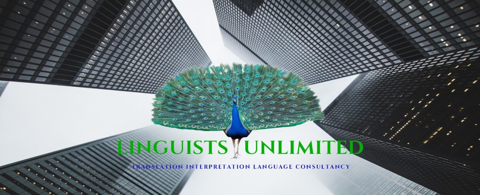 Linguists Unlimited